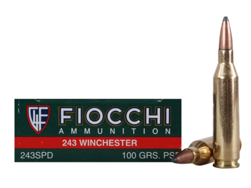 Fiocchi Shooting Dynamics Ammunition 243 Winchester 100 Grain Pointed Soft Point Box of 20
