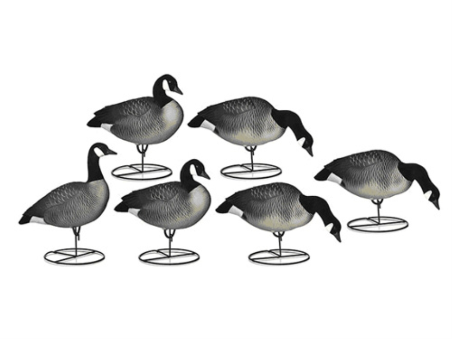 Dakota Decoys X-Treme Full Body Lesser Canada Goose Decoys Pack of 6