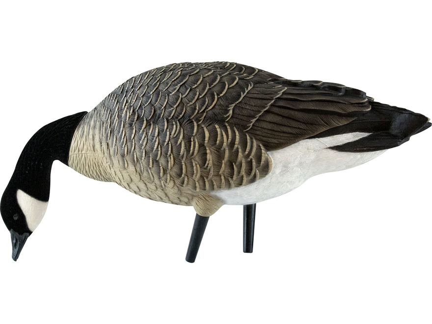 Avian-X Painted Feeder Lesser Goose Decoy Pack of 6