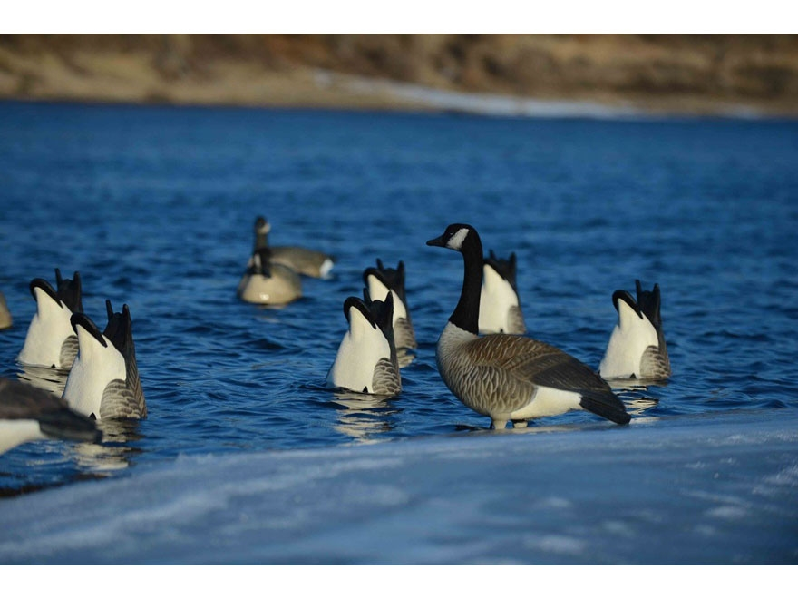 GHG Pro-Grade Honker Butt-Up Canada Goose Decoy Pack of 2