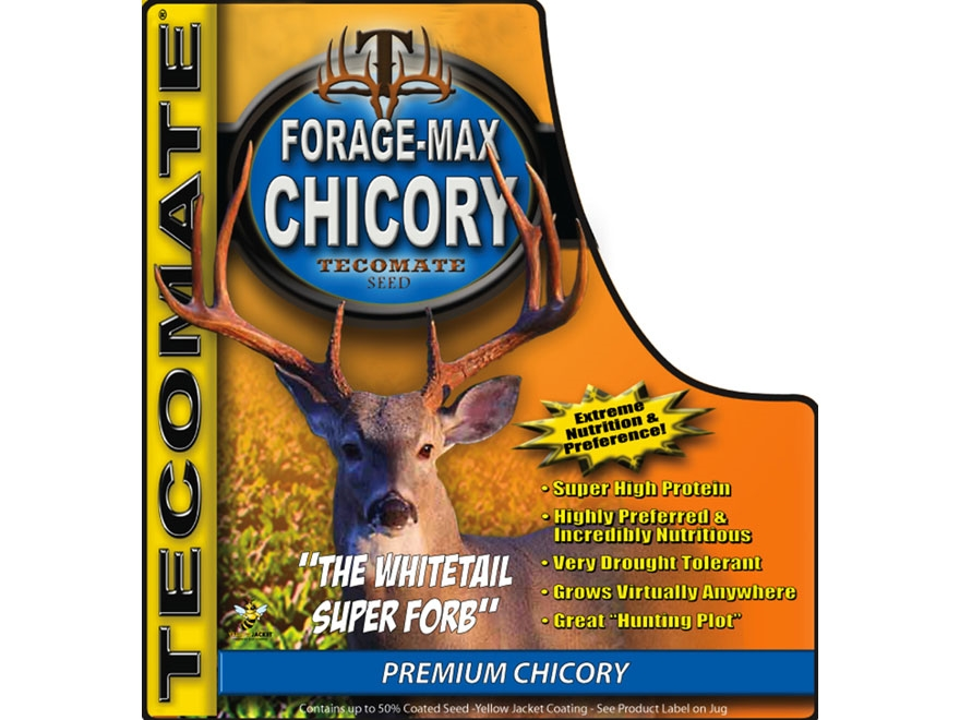 Tecomate Forage-Max Chicory Perennial Food Plot Seed 3 lb