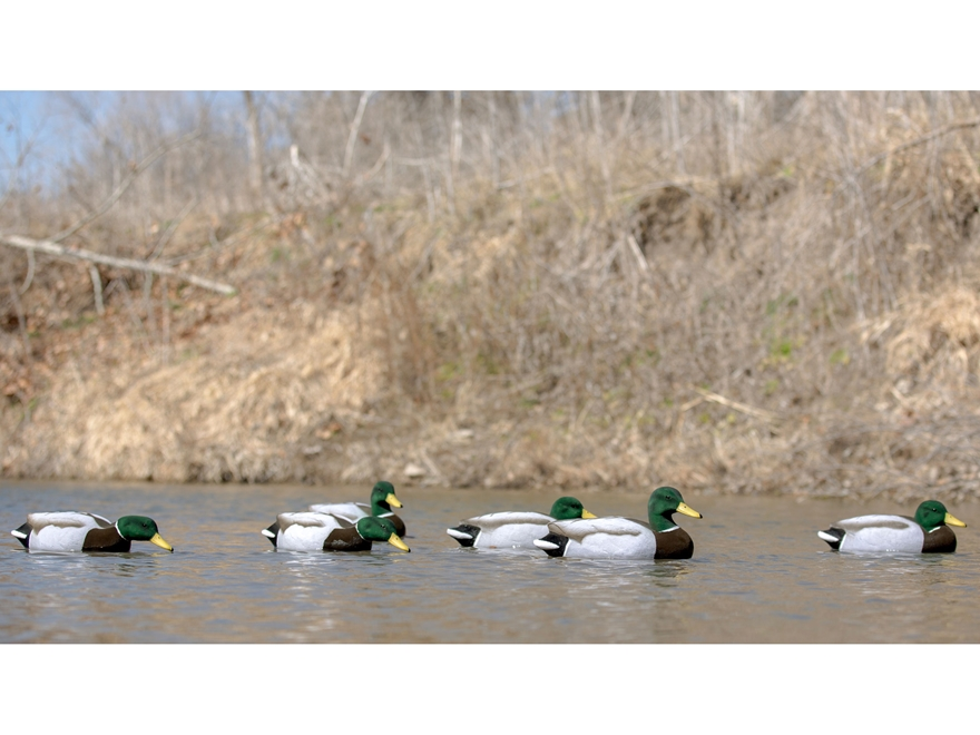 Tanglefree Migration Edition Mallard All Drakes Fully Flocked Combo Duck Decoy Pack of 6