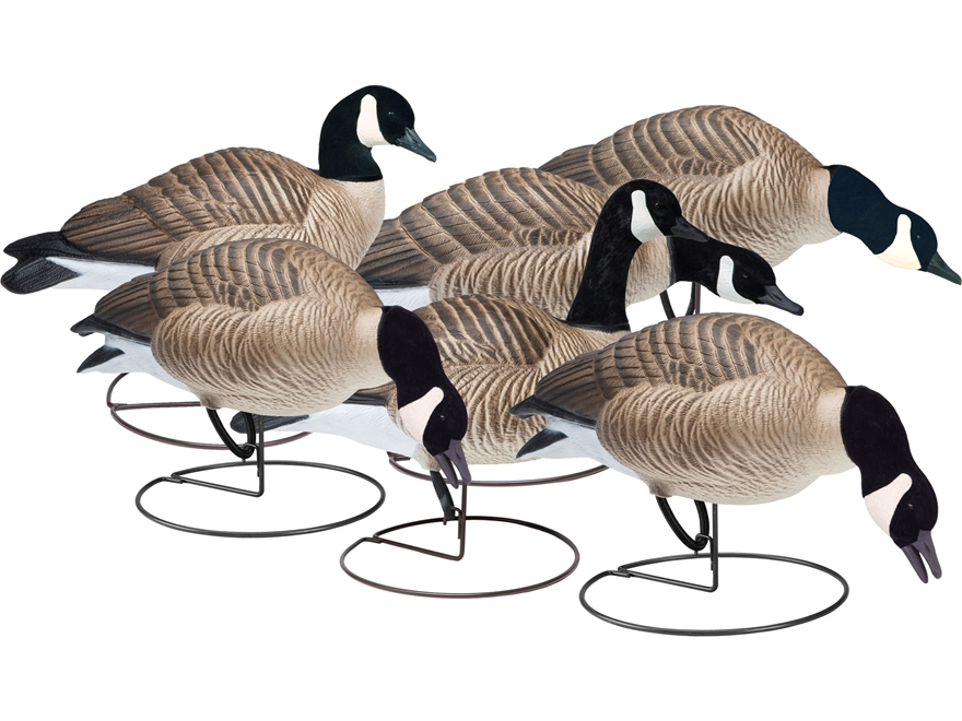 Final Approach Last Pass HD Outfitter Pack Full Body Lesser Goose Decoy Pack of 6