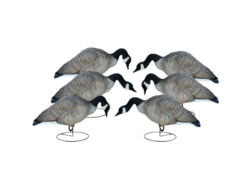 Final Approach Livecraft Feeder Full Body Canada Goose Decoy Pack of 6