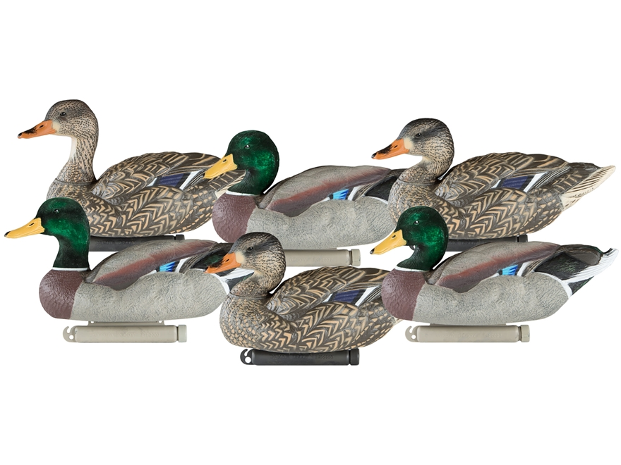 Dakota Decoy X-Treme Mallard Duck Decoy Pack of 6