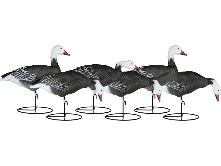 Dakota Decoy X-Treme Full Body Blue Goose Decoy Pack of 6