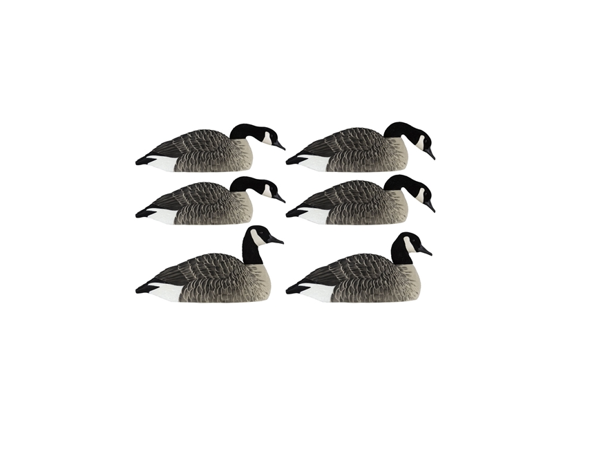 Avian-X Flocked Honkers Shell Canada Goose Decoy Pack of 6