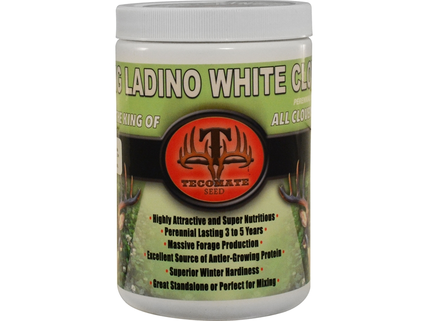 Tecomate King Ladino White Clover Pounder Perennial Food Plot Seed 1 lb
