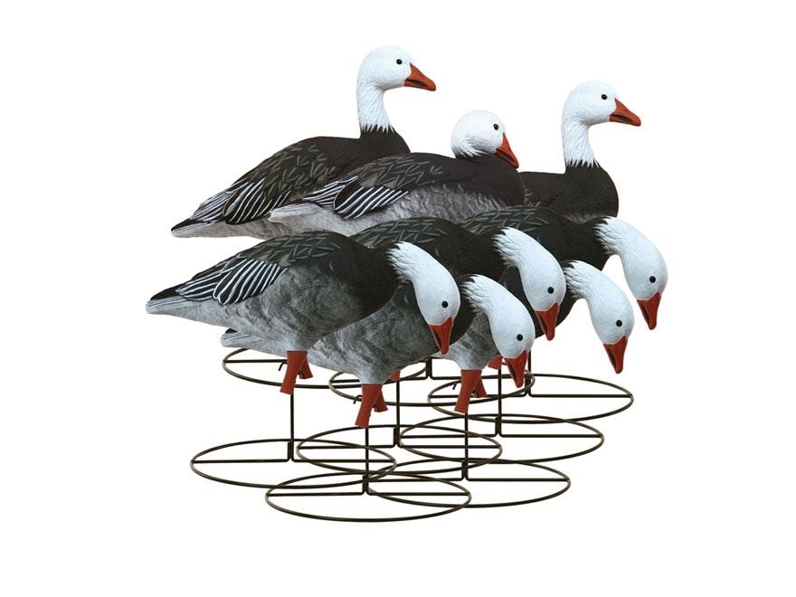 Higdon Full Size Full Body Blue Goose Decoy Polymer Pack of 8
