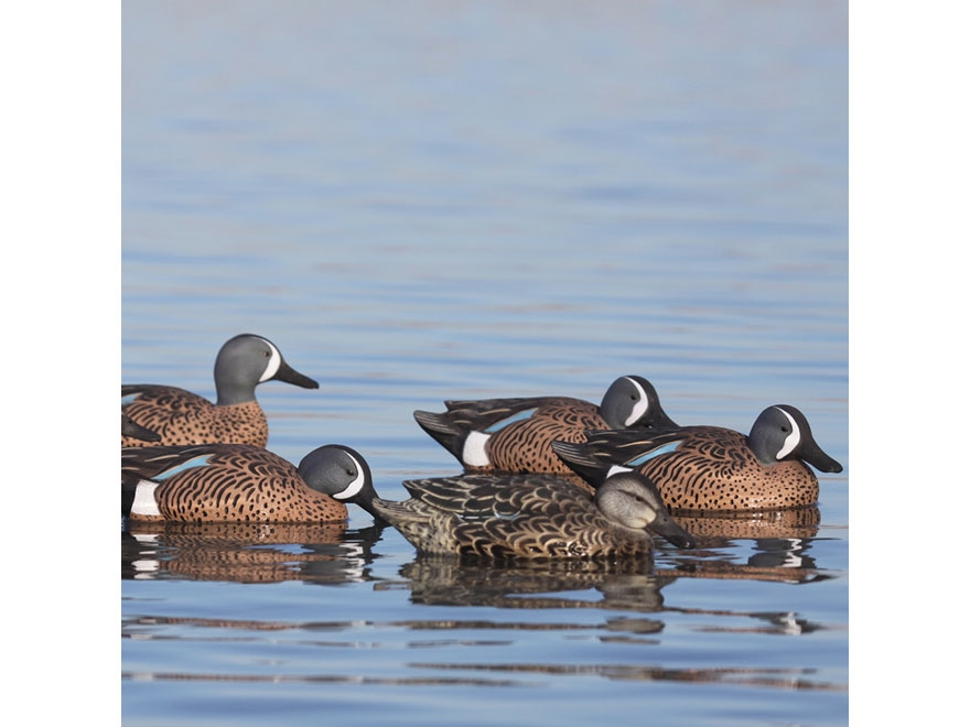 GHG Pro-Grade Blue-Winged Teal Duck Decoy Pack of 6