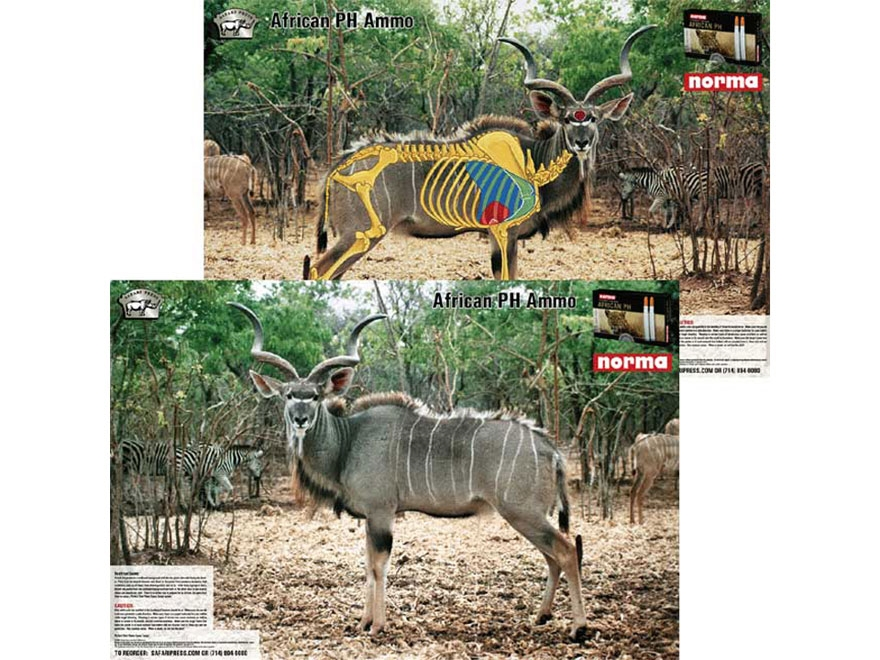 Safari Press Perfect Shot African Plains Game Target Warthog, Kudu, Impala Springbok, a...