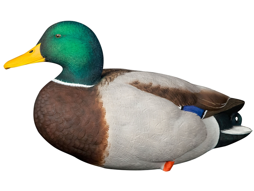 Avian-X Top Flight Full Body Mallard Duck Decoy Pack of 6 with Slotted Decoy Bag