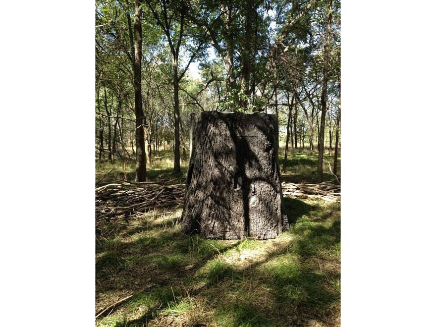 Nature Blinds Treeblind Ground Blind 77 X 77 Mpn