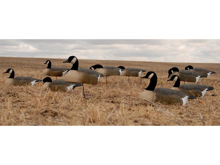 buy canada goose buy