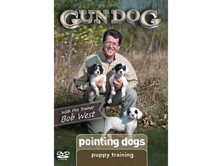 Gun Dog Dvd Puppy Training
